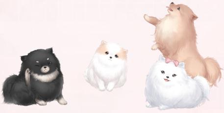 Cute Pet Party