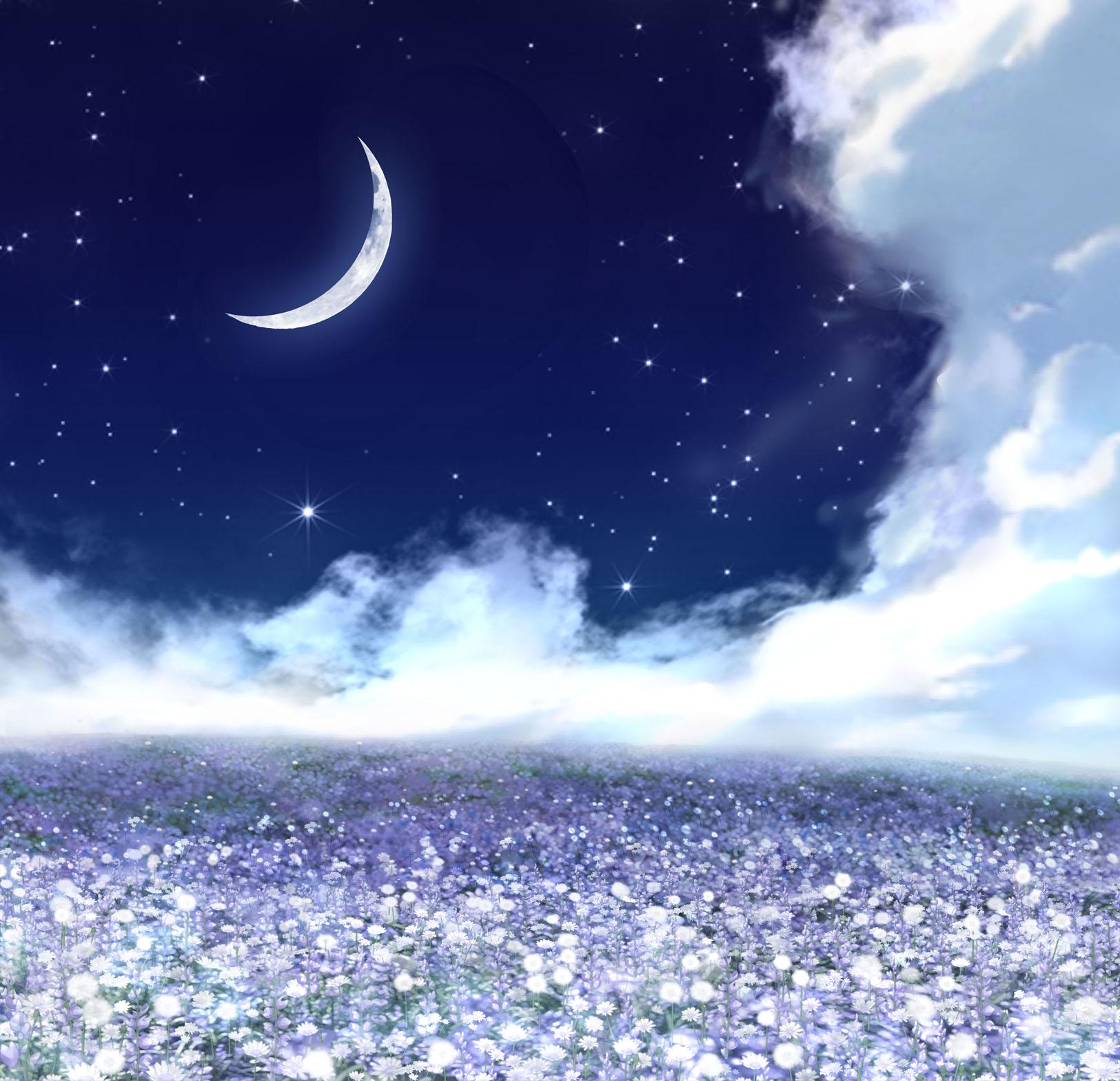 Flower Field Date