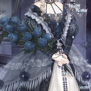 Night Rose 2
