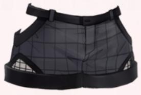Grid Shorts