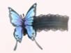 Butterfly Garters-Night