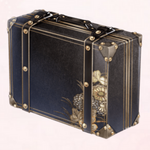 Suitcase of Memory
