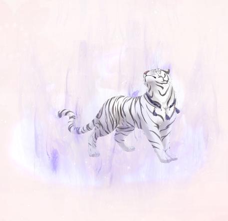 Night White Tiger