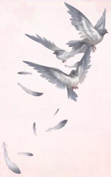 Autumn Grey Pigeon