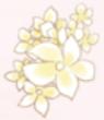 Full Bloom-Rare