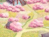V1: Chapter 6 Flower Field Encounter