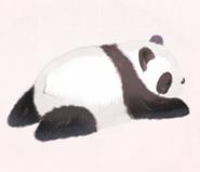 Lazy Prone Panda