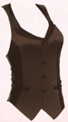 Humorous Waiter-Vest