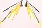 Laser Wings