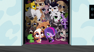 Pets in elevator