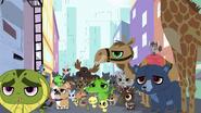 Crowd of animals