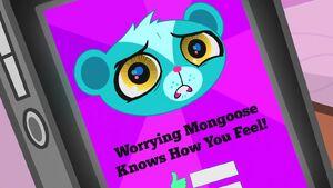 What Meme Worry 064.jpg