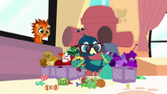 Basil organizing pet toys