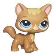 3578 Cat Pet