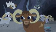 Tenzing ang mountan goats