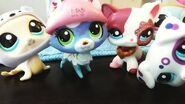 LPS SAVELPSTUBE Collab! For LPS BlueJay