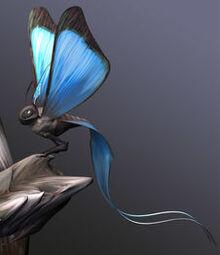 Carrier butterfly.jpg