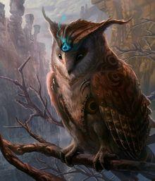 Herxes owl.jpg