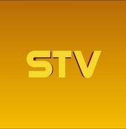 Логотип телеканала STV (2020-н.в.)
