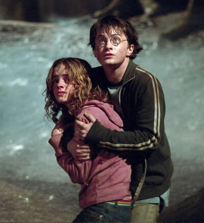 Harry and Hermione4.jpg