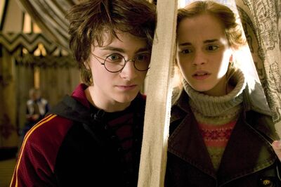 Harry and Hermione1.jpg