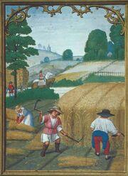 Farming in Lucerne.jpg
