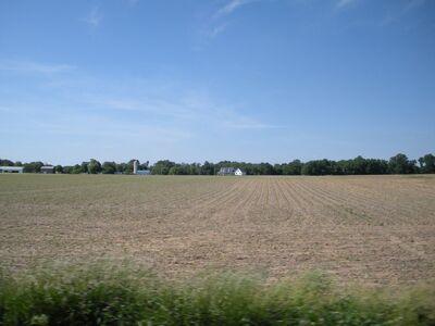 Hyphon's Farm.jpg