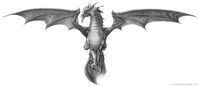 Grey Dragon.jpg