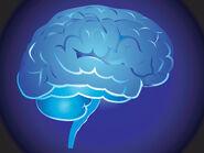 Brain-1634233