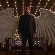 Wings L