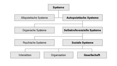 Systems Society.jpg