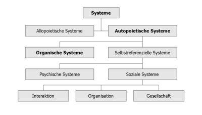 Systems Organism.jpg