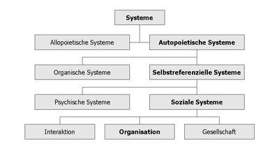 Systems Organisation.jpg