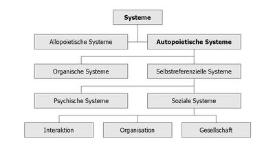 Systems Autopoiesis.jpg