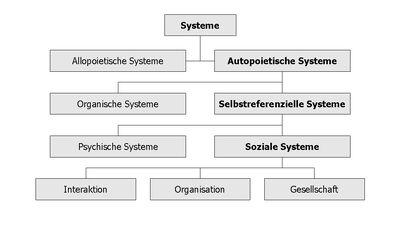 Systems Social.jpg