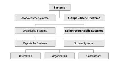 Systems Sinn.jpg