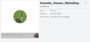 Canada Goose StandingBadge