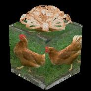 Chickengiftofunopenedgifting