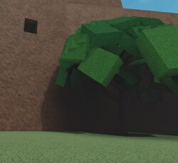 Safari Hole.jpg