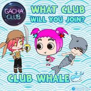Club Whale