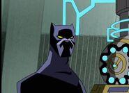 Czarna pantera 10