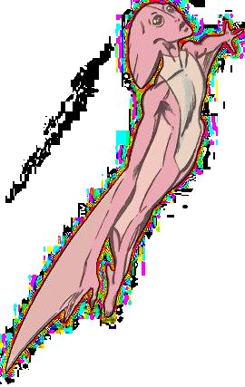 Dinah Soar (Ziemia-616)