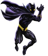 Black Panther 8