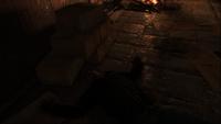 Бурбон без сознания