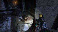 Тень-2 Metro 2033 Redux Ребёнок