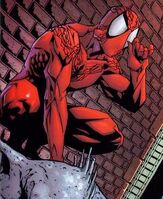 Peter Parker (Ziemia-15)