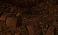 Старый револьвер в ДП