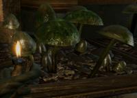 Вкусные грибочки