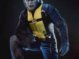 Henry McCoy (Ziemia-616)