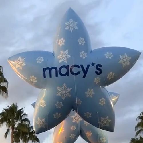 Blue Macy's Starflakes